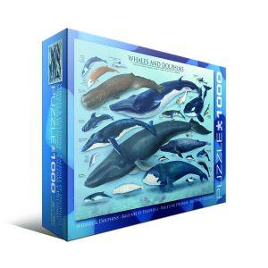 Пазл Eurographics Киты и дельфины,1000 элементов