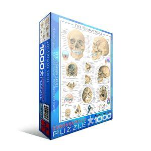 Пазл Eurographics Человеческий череп, 1000 элементов