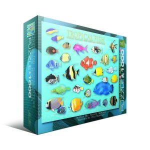 Пазл Eurographics Тропические рыбы, 1000 элементов